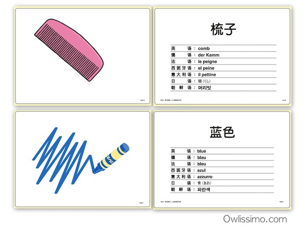shichida flash cards