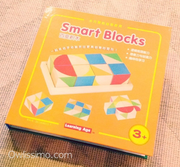 Build & Play Smart Blocks chinese