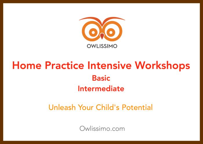 Home Practice Intensive Workshop image 201508