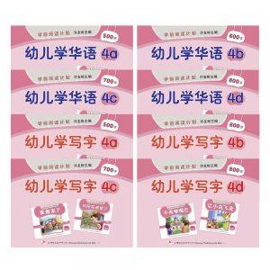 Odonata workbooks learn mandarin write 4 cover
